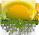 polen-de-pin Logo